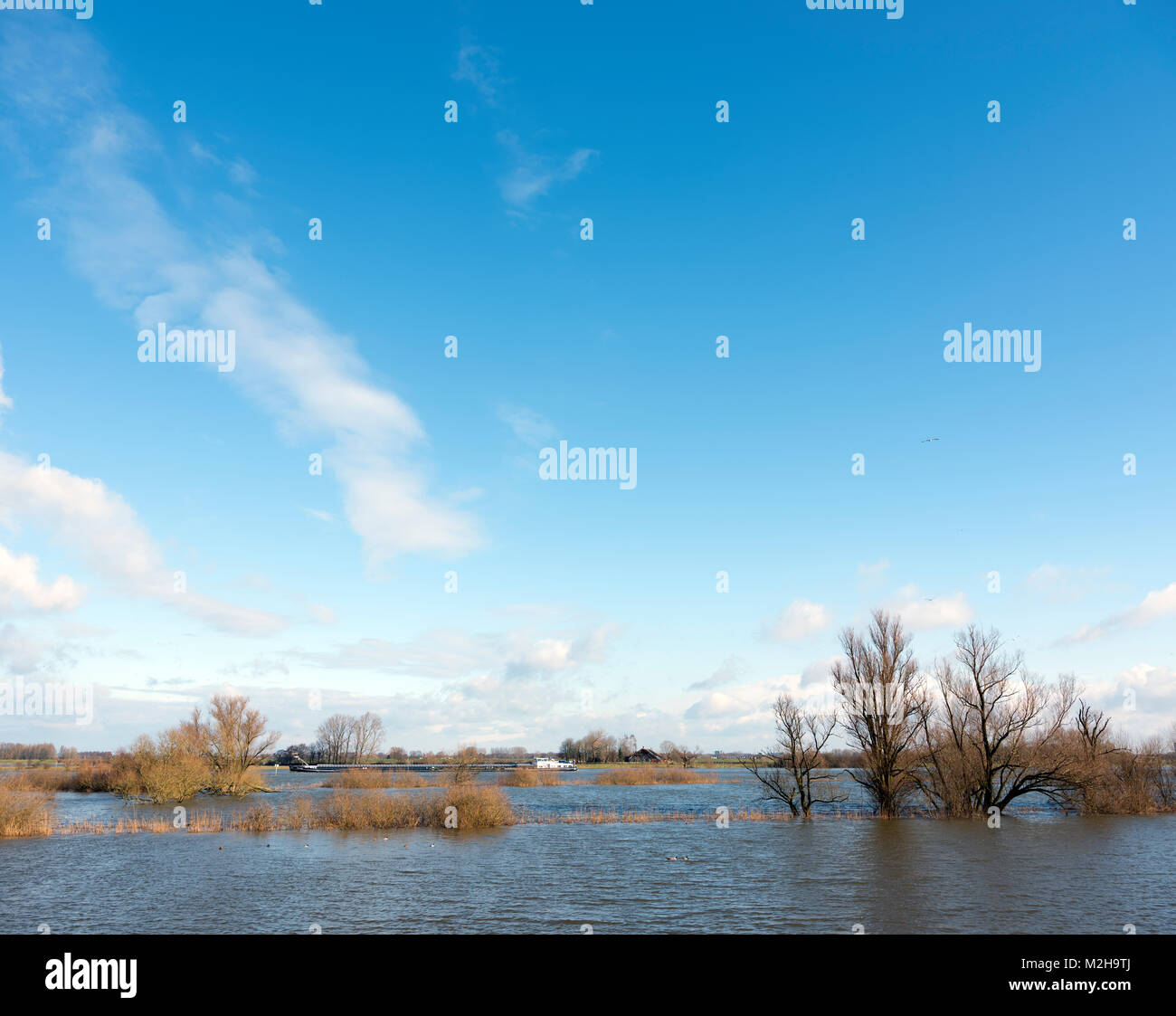 flood plains of river ijssel and ship near Zalk between Kampen and Zwolle in the netherlands Stock Photo