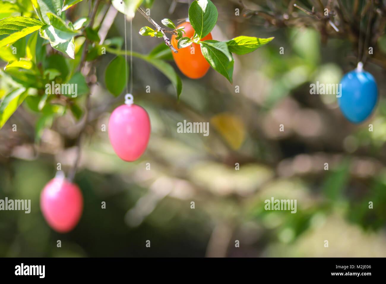 Gartenstrauch Stock Photos Gartenstrauch Stock Images Alamy