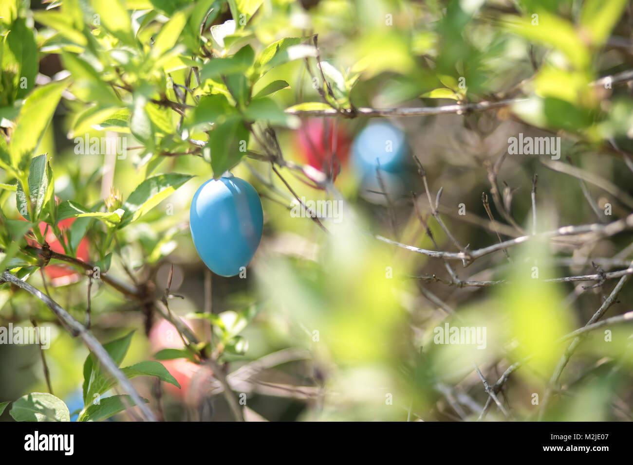 Bunter Osterschmuck Im Gartenstrauchcredit Tamara Stock Photo