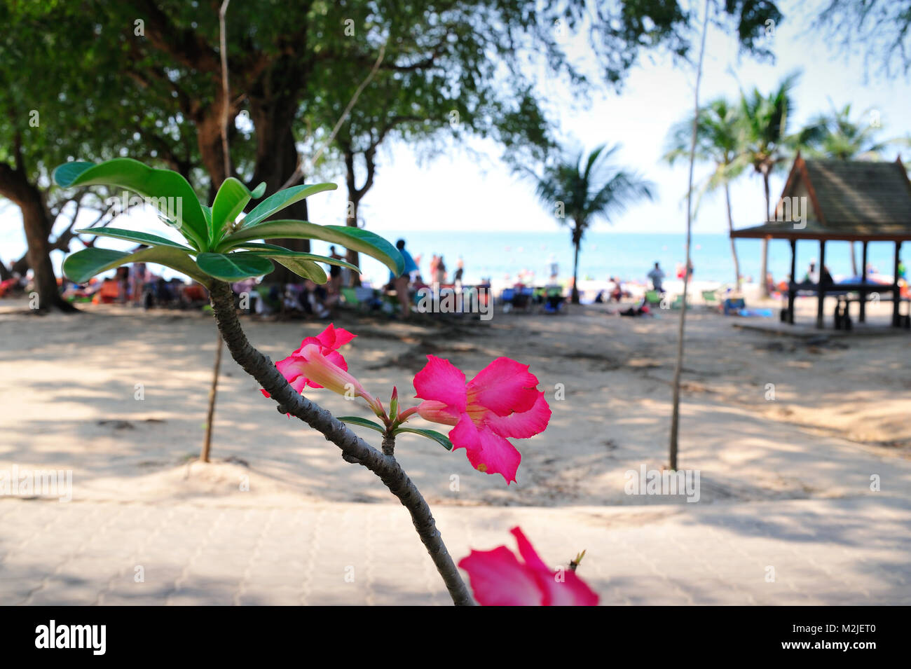 Soi Kaew Beach Resort Thailand - Stock Image