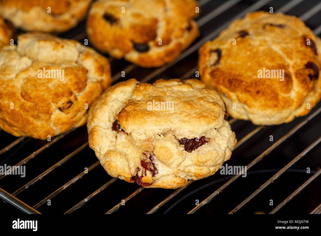 home made fruit scones known as rock cakes cooling on a wire rack after baking - Stock Image