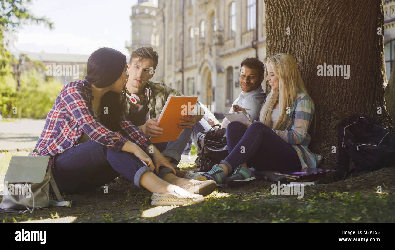 College students having discussion under tree on campus, preparing for exams - Stock Image