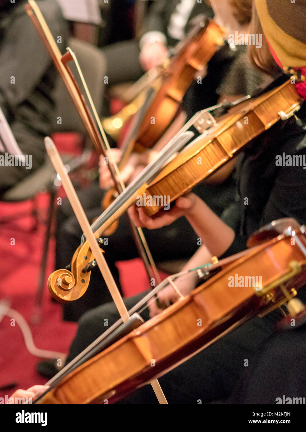 Three wooden violins playing in the orchestra close-up. Classical music - Stock Image