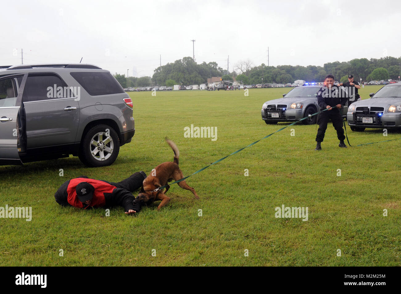 Hernandez holds on as Miletonde subdues a tricky suspect. 20100417-A-1403C-009 by Texas Military Department - Stock Image