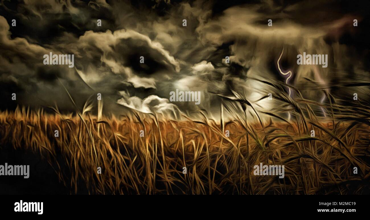 Oil painting. Dramatic stormy clouds over field of wheat. - Stock Image