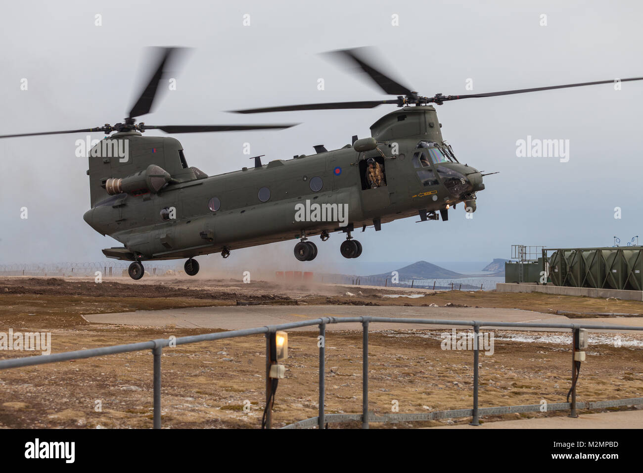 RAF Chinook coming into land on helipad in the Falkland Islands - Stock Image