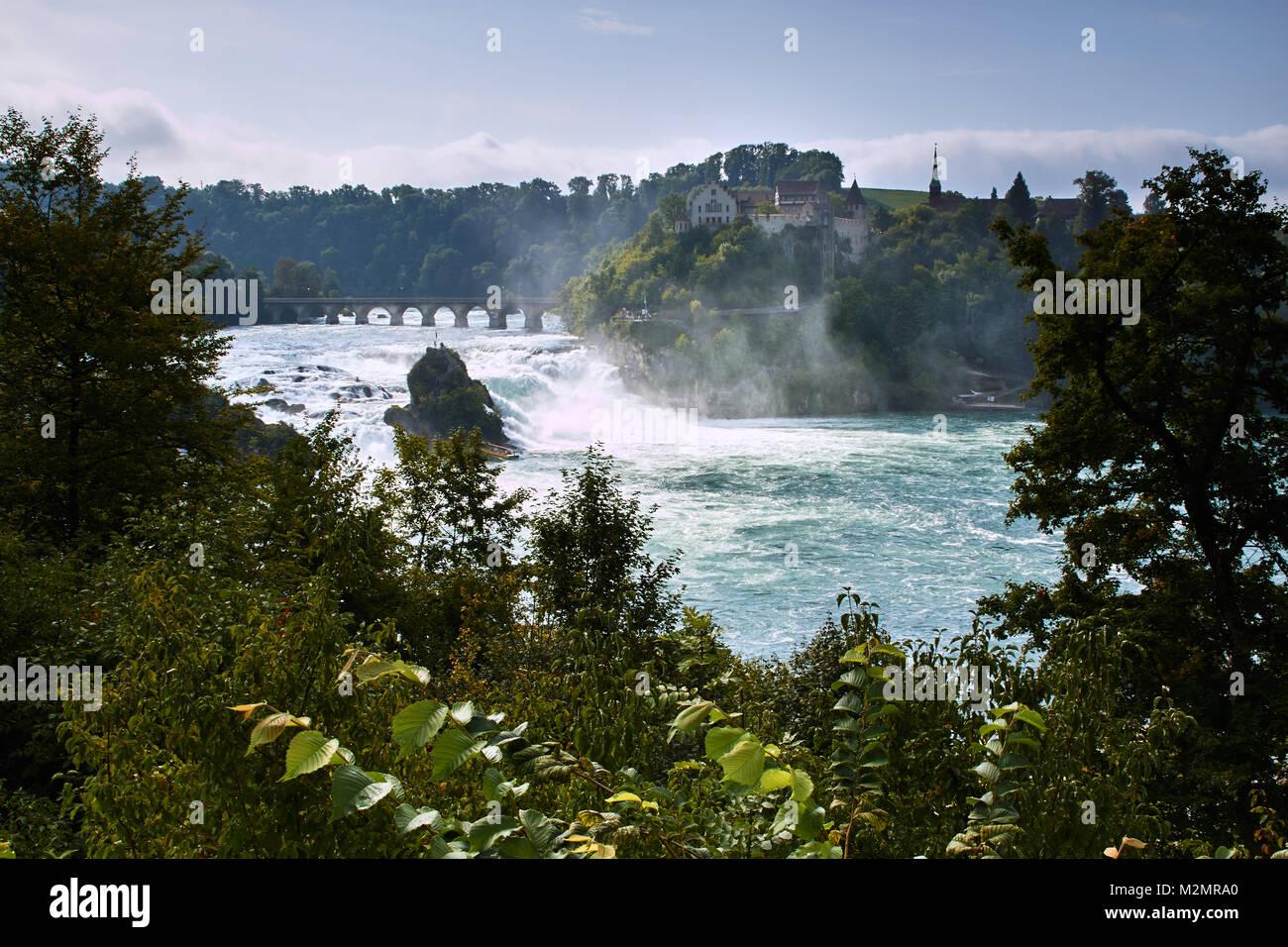 Rheinfall in summer, Switzerland - Stock Image
