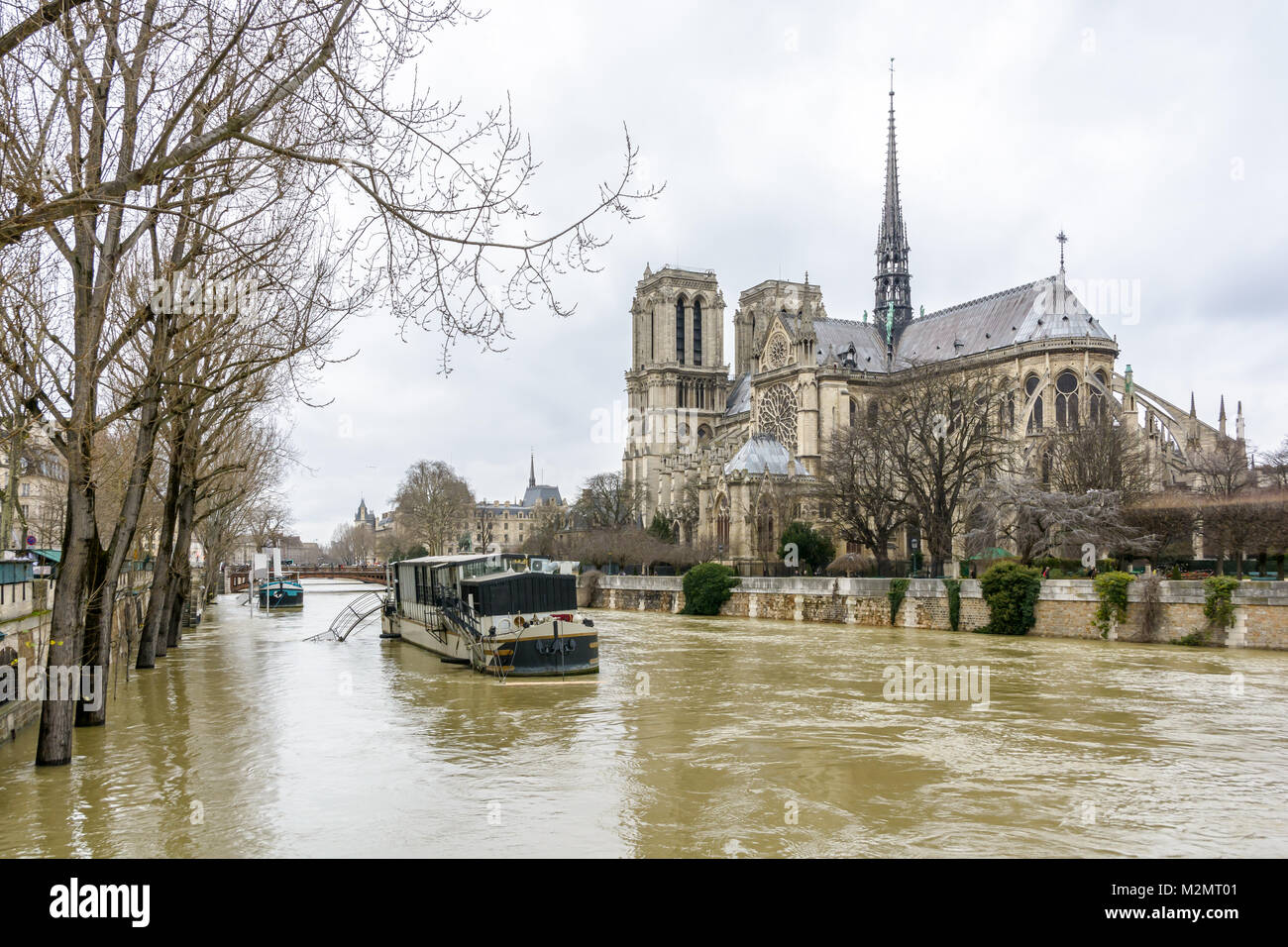 View of the swollen Seine at the foot of Notre-Dame de Paris cathedral, during the winter flooding episode of January - Stock Image