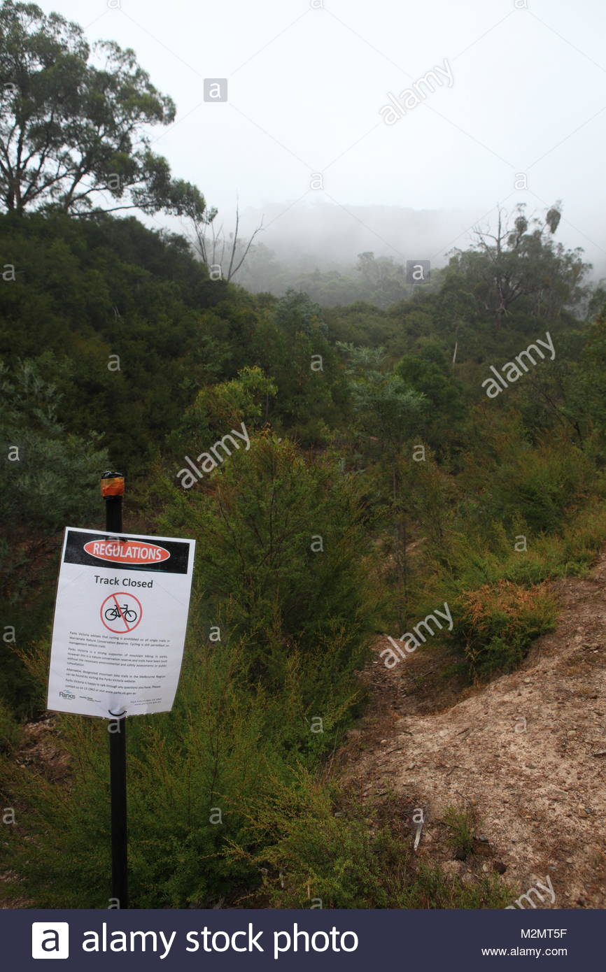 Closed MTB Single Track - portrait format - Stock Image