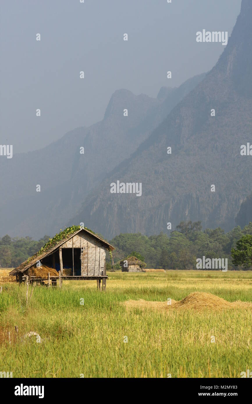 Small Rice Barn in a ricefield in a mountain region of Laos - Stock Image