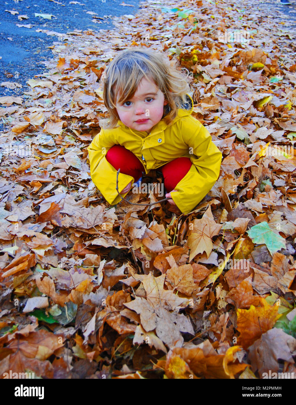 Child Crouching in Autumn Leaves - Stock Image