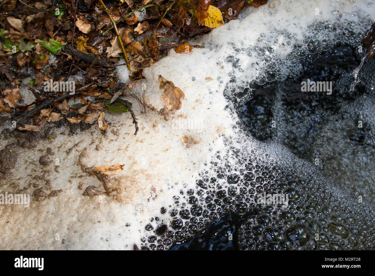 Schaum, Schaumbildung in einem Bach, Wasseroberfläche, scum, foam, spume, foam formation, frothing formation - Stock Image