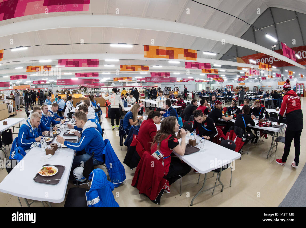 Gangneung, South Korea. 08th Feb, 2018. Athletes from different nationalities sitting for a meal in the mess hall - Stock Image