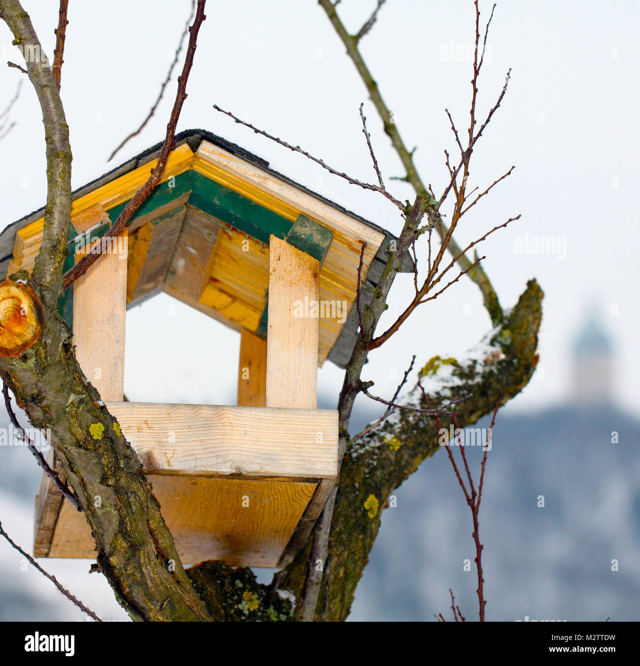 Birdhouse waiting for guests - Stock Image