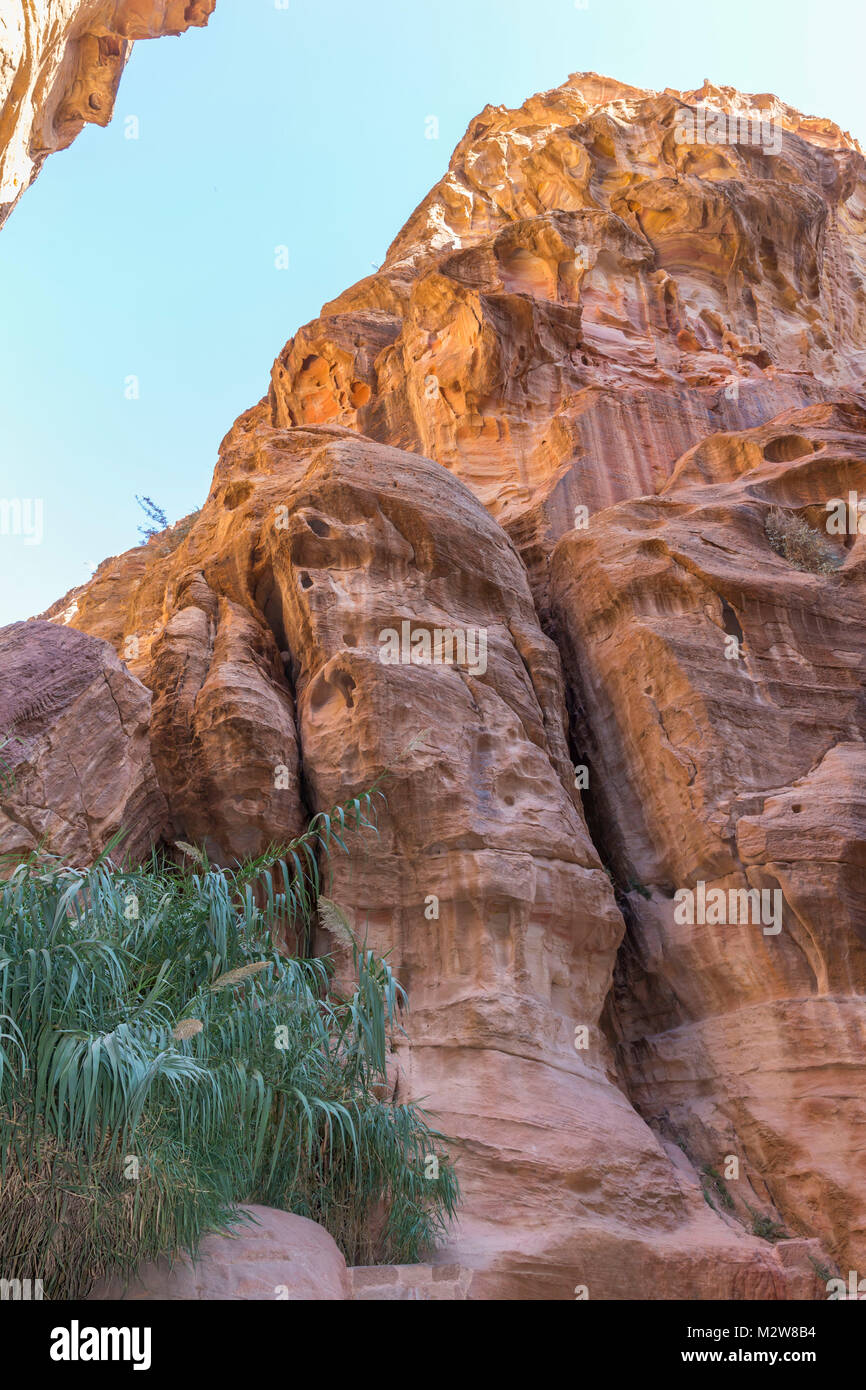 The Siq, gorge, 1200 m, Petra, capital of the Nabataeans, UNESCO world cultural heritage, Jordan, Asia - Stock Image