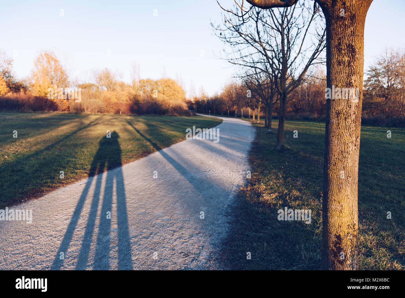 Shadow silhouette on grass - park. - Stock Image