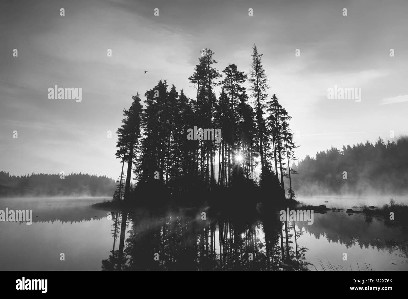 Beautiful reflections of lake and small island  in the early morning mist, in black and white. - Stock Image