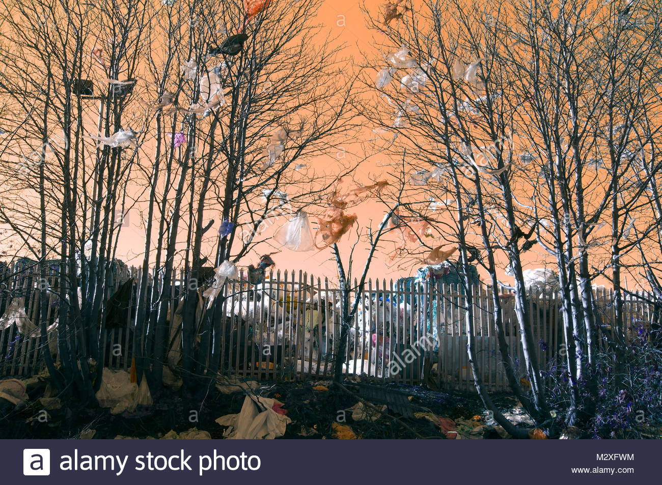 Waste plastic bags and packaging in trees and on ground, adjacent to a recycling facility in Birmingham, West Midlands, - Stock Image