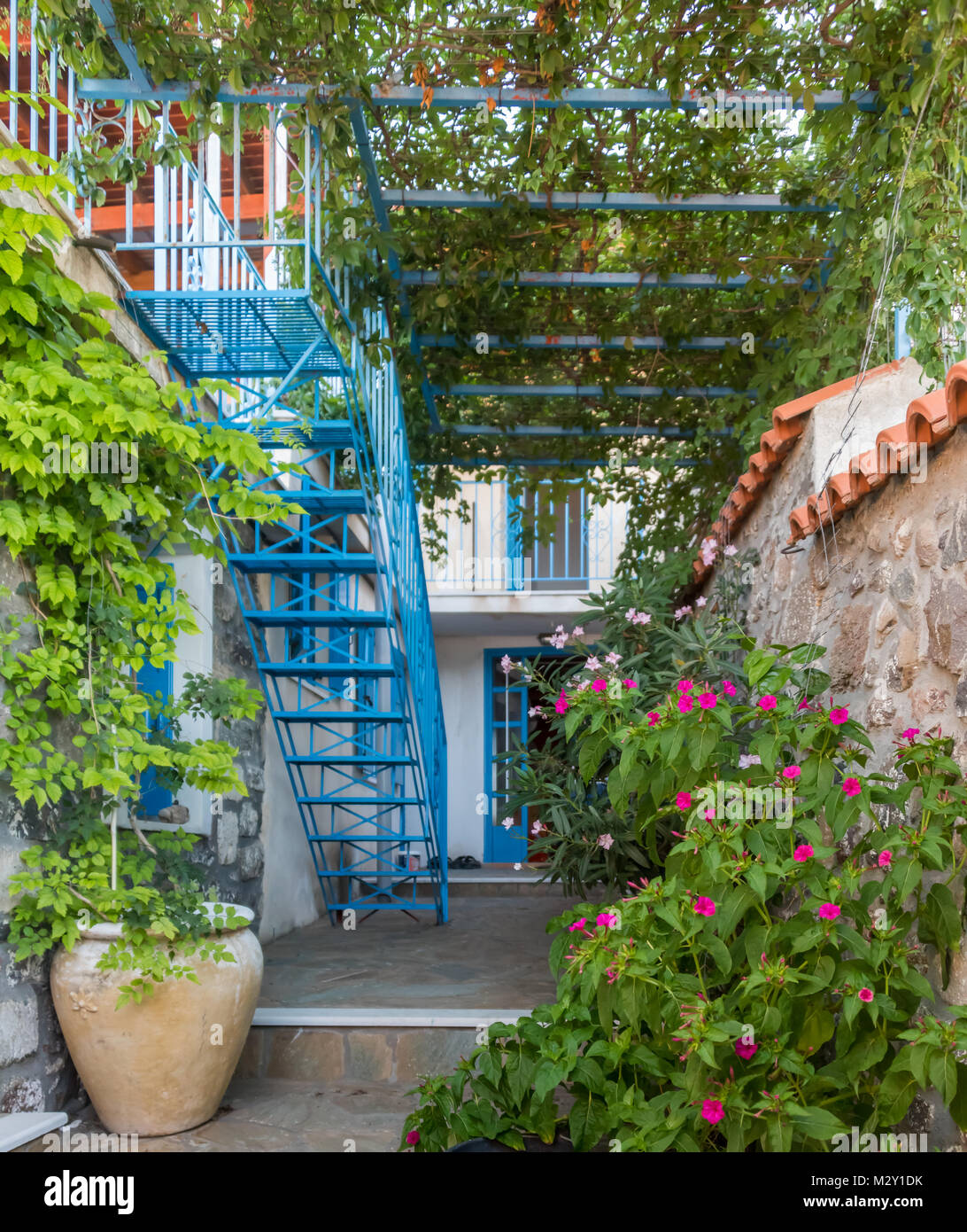 Flowers in a Greek Village Garden with flower pots, trellis and stairs Stock Photo
