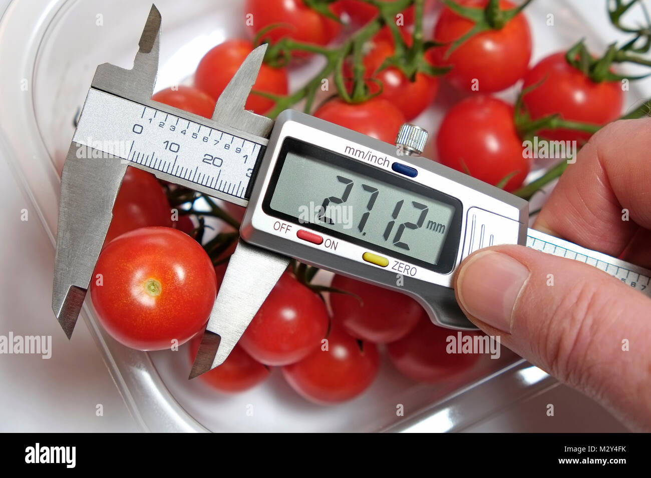 measuring tomato with digital calipers Stock Photo