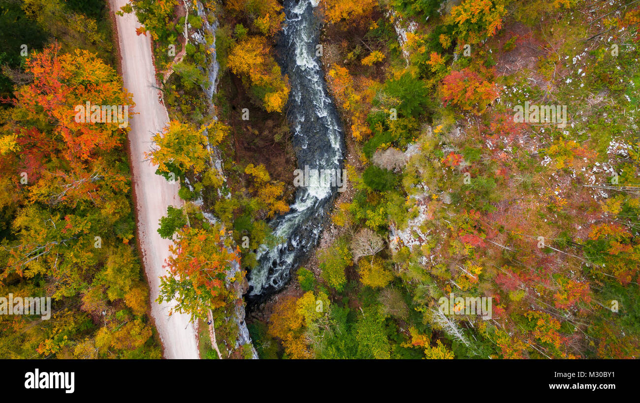 Aerial drone view of amazing autumn colors in fall forest. Rakov Skocjan, Slovenia Stock Photo