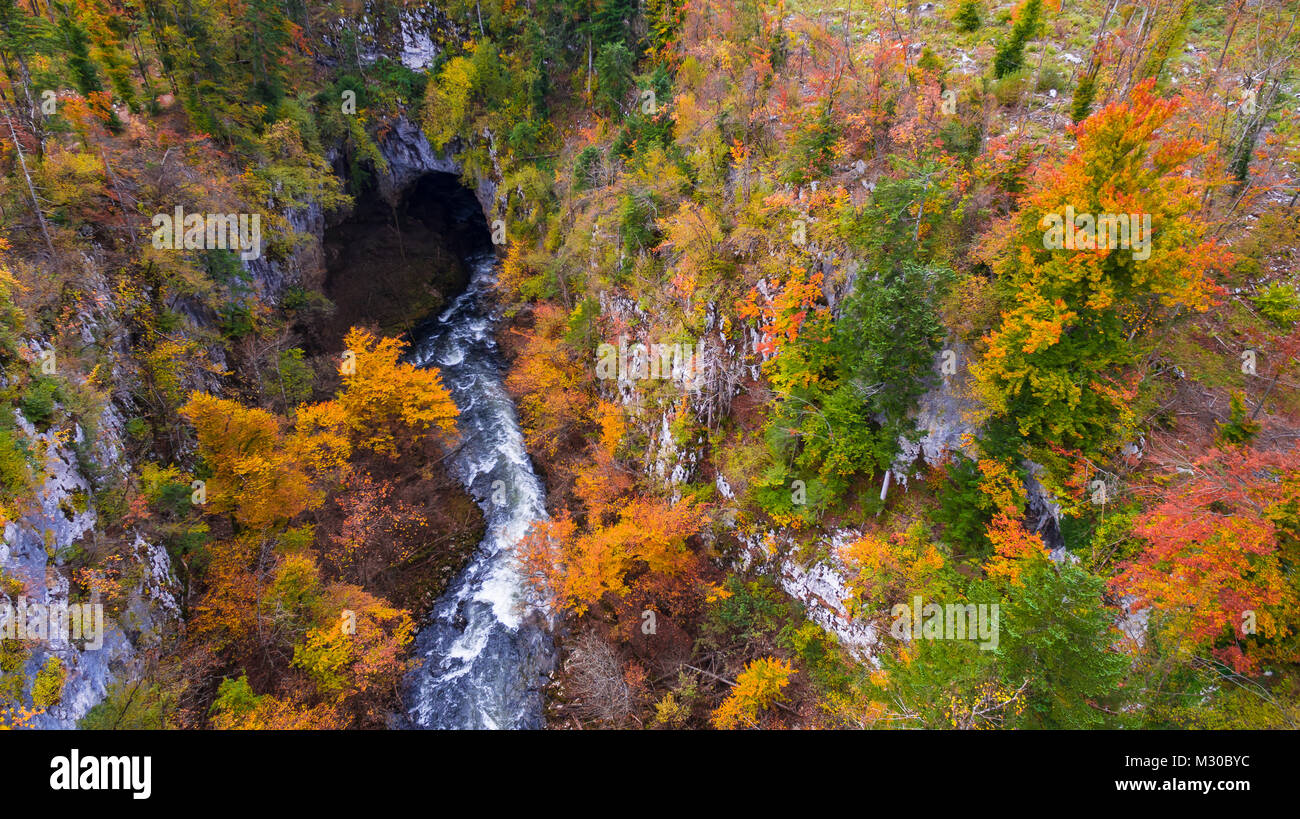 Aerial drone view of amazing autumn colors in fall forest. Rakov Skocjan, Slovenia - Stock Image
