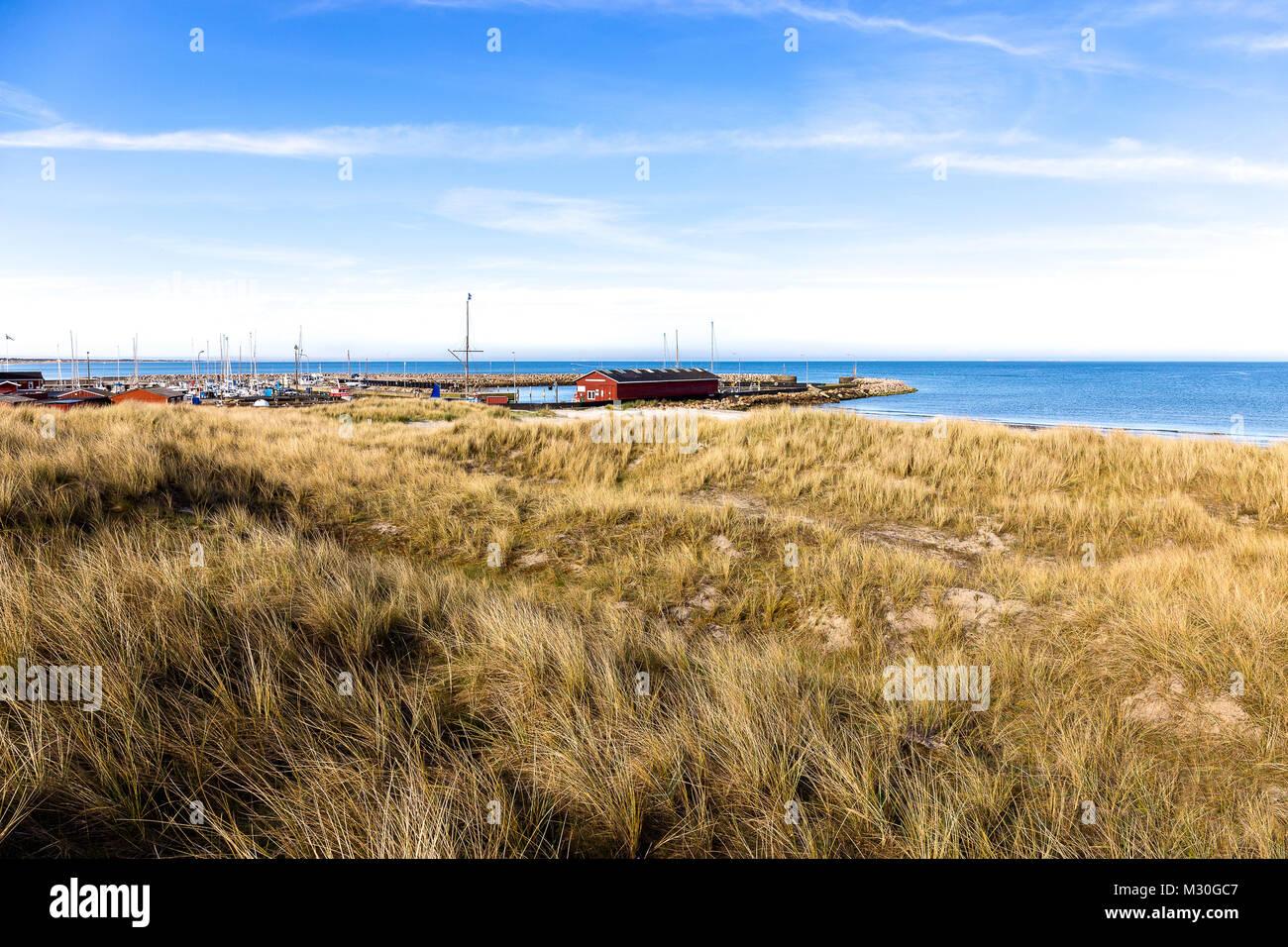 Beach at the little village Aalbæk near Skagen in the area of Kattegat - Stock Image