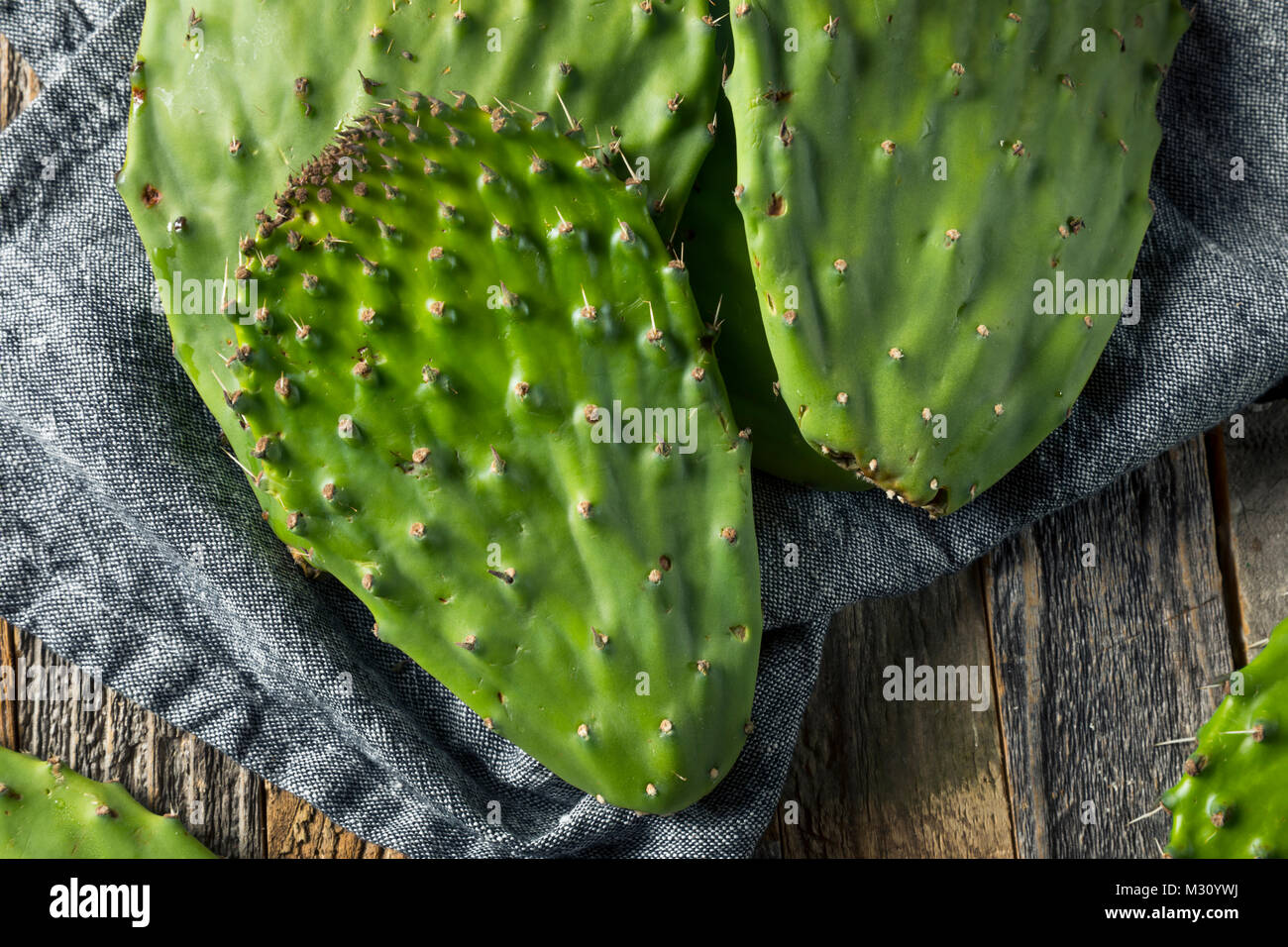 Raw Green Organic Cactus Leaf Fruit Ready to Cook - Stock Image