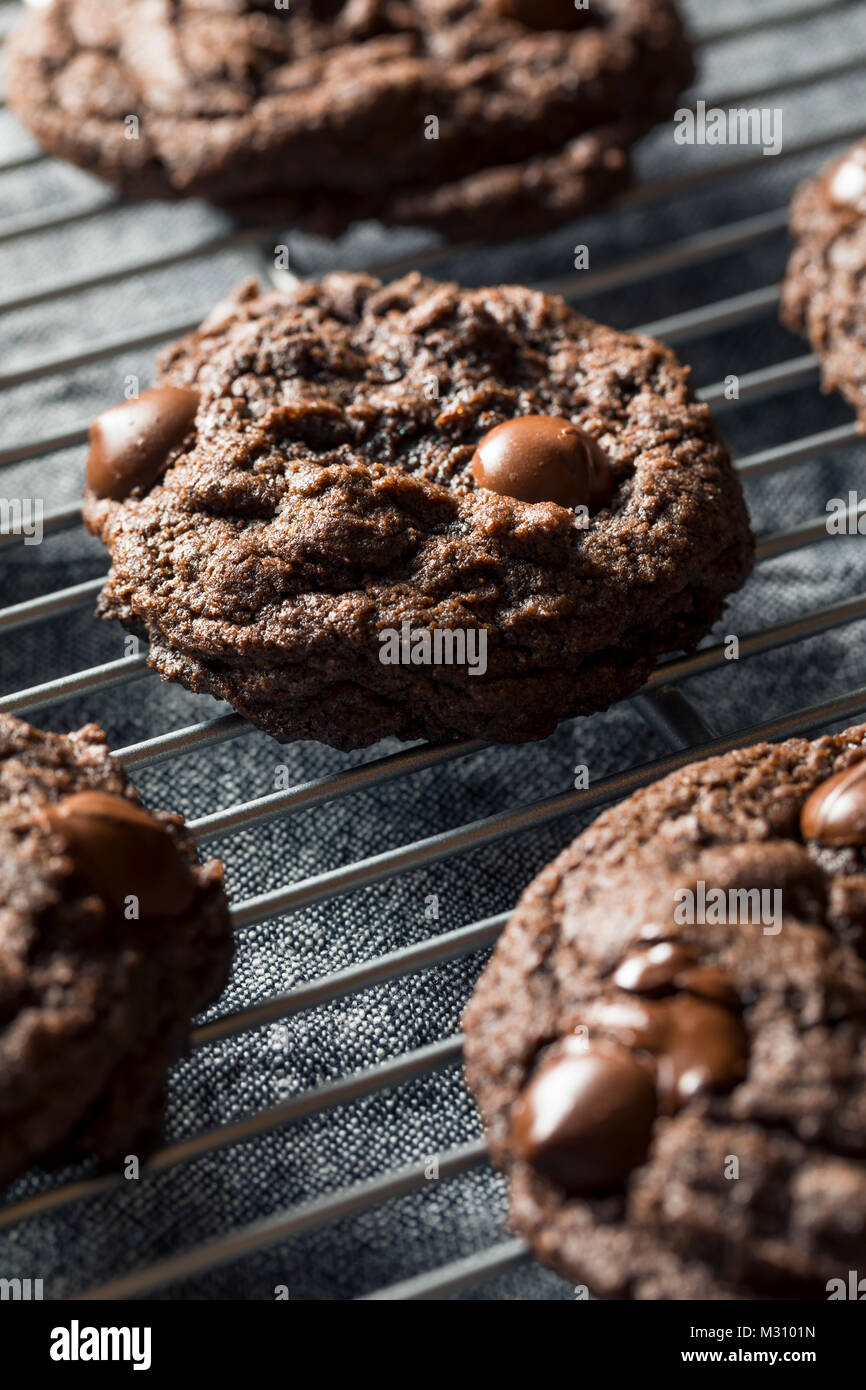 Homemade Dark Double Chocolate Chip Cookies Ready to Eat - Stock Image