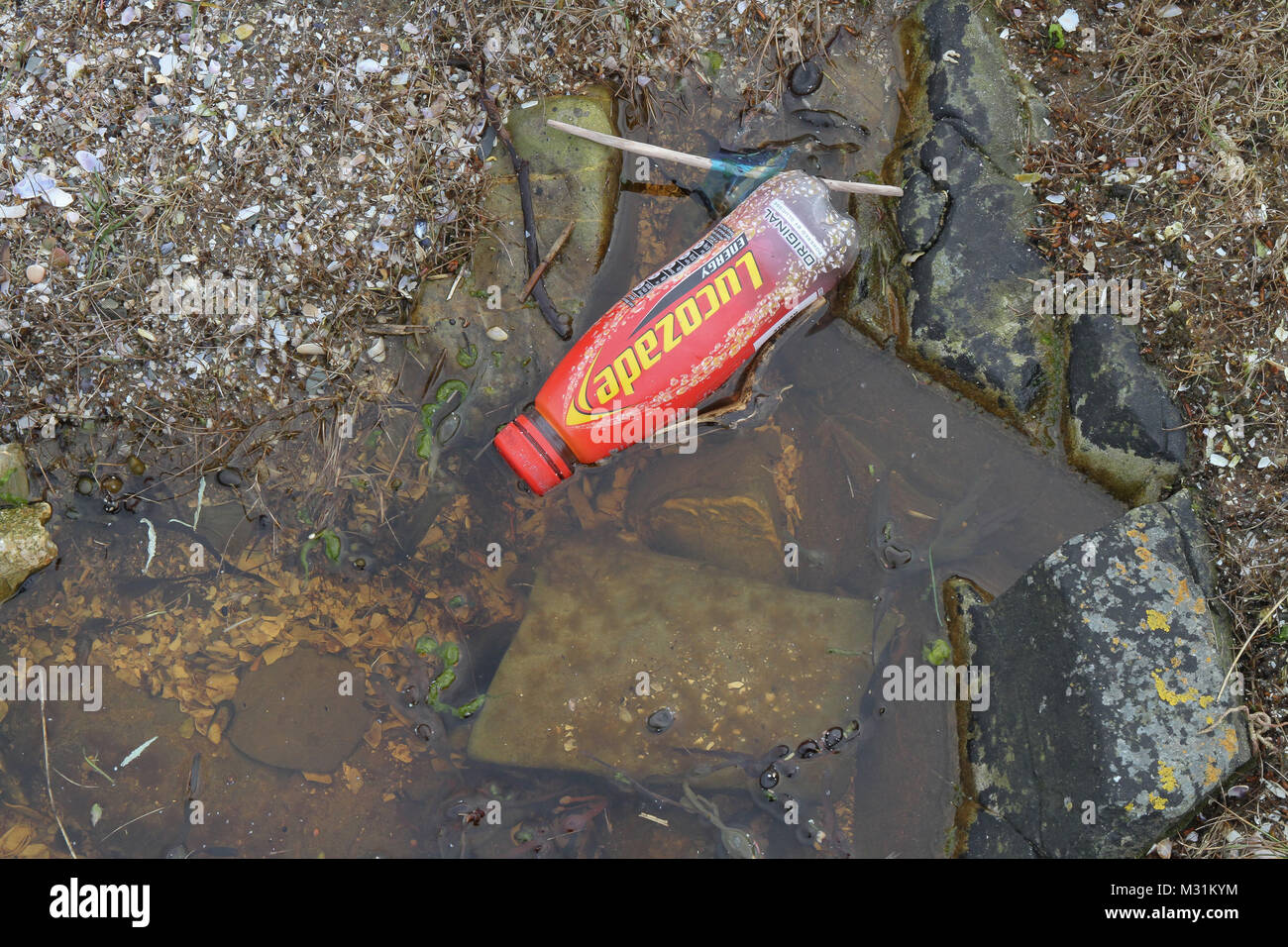 Debris washed up on a UK beach - a plastic bottle washed up on the shore.. - Stock Image