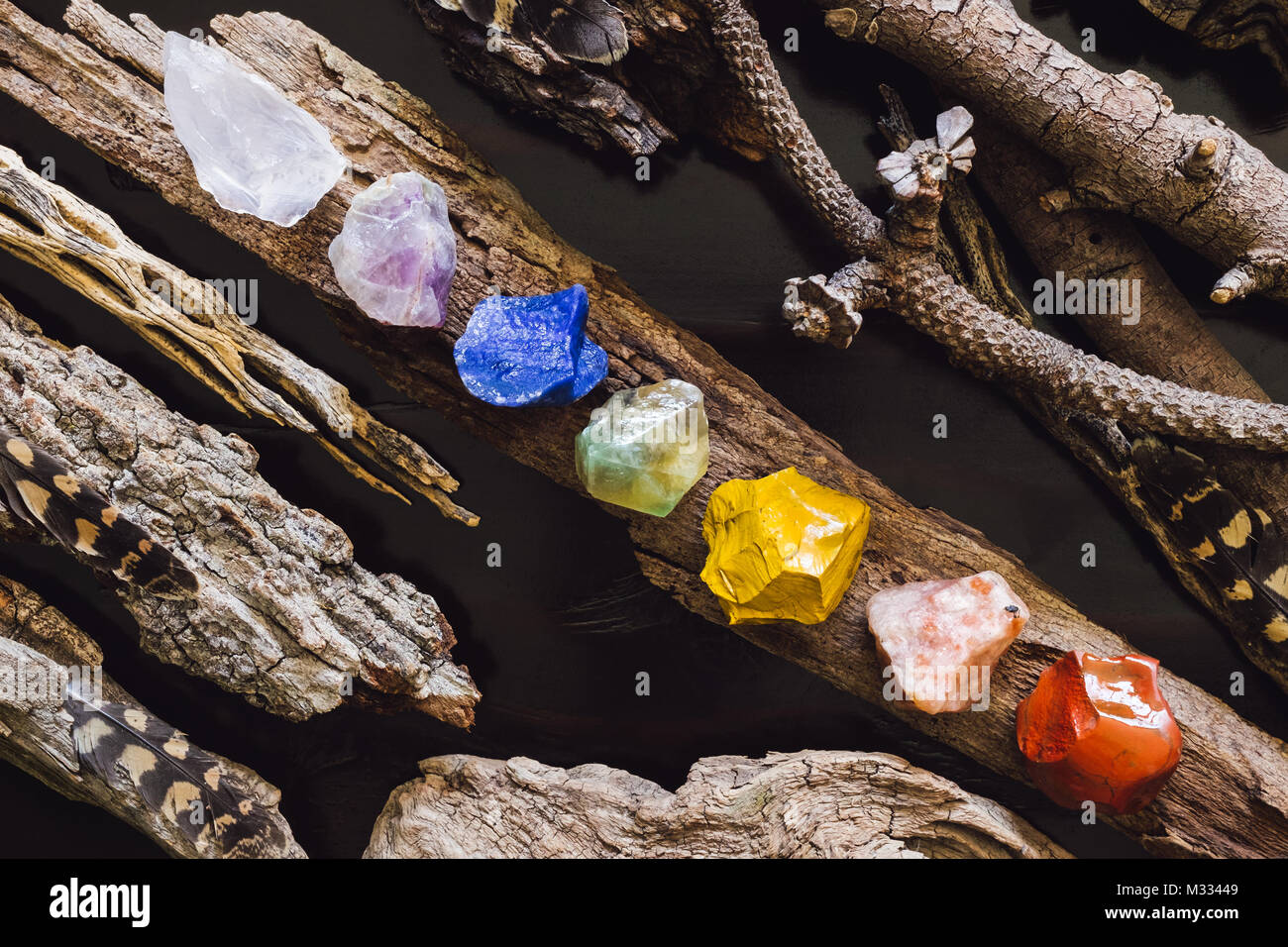 Stones Arranged in Chakra Order on Tree Bark - Stock Image