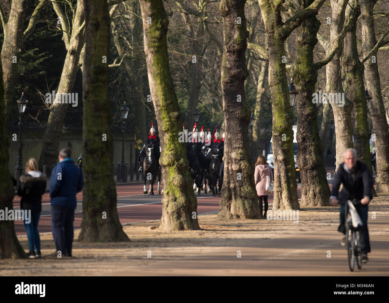 6 February 2018. Sunny winter morning with people on Constitution Hill under a canopy of leafless trees, London, - Stock Image