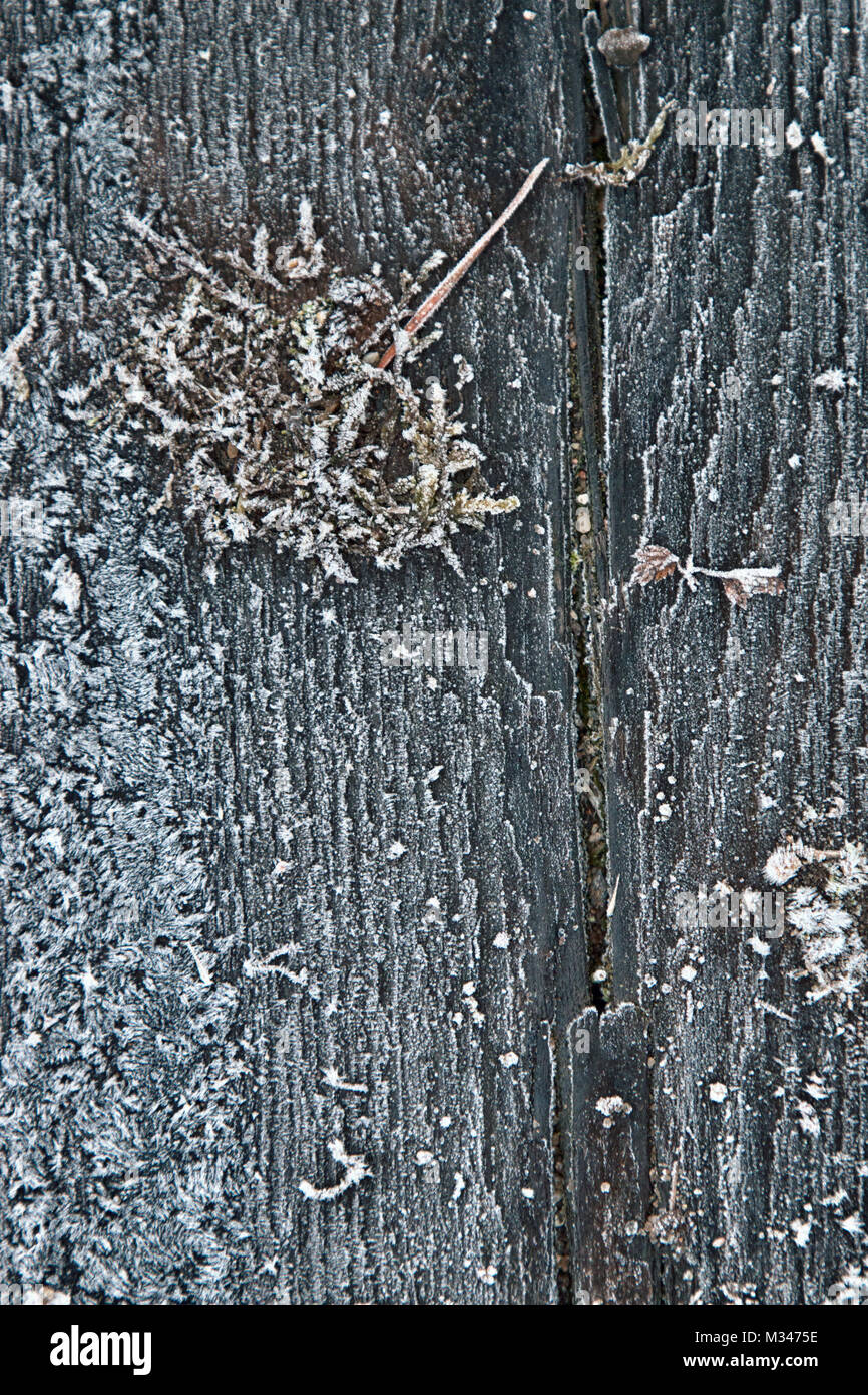 Ground frost, frozen ground, covered with frost. Macro, background - Stock Image