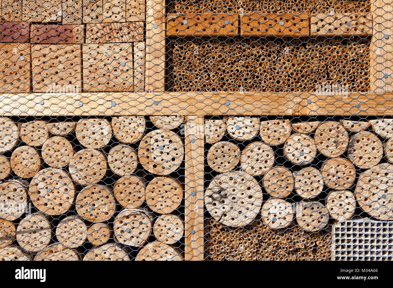 Insect asylum, insect box, an artificial help for nesting and overwintering insects - Stock Image