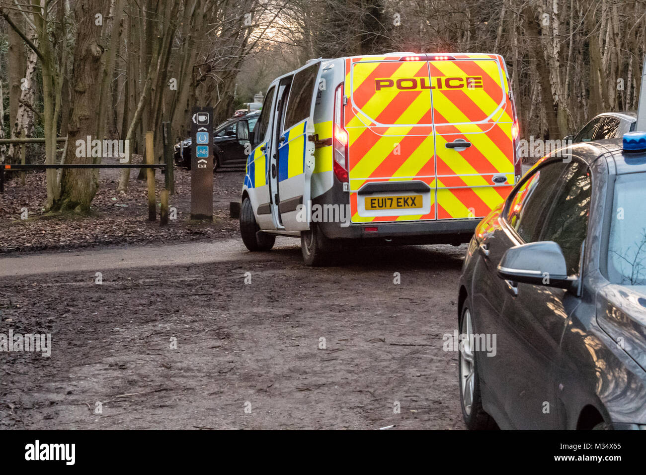 A large Essex police operation took place to remove an unlawful travellers camp at Thorndon Country Park, Brentwood, - Stock Image