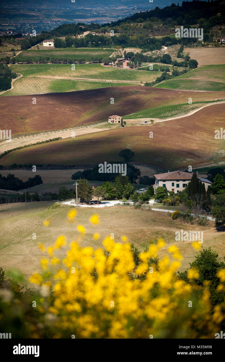 Italy, Tuscany, the country of Siena district. Stock Photo