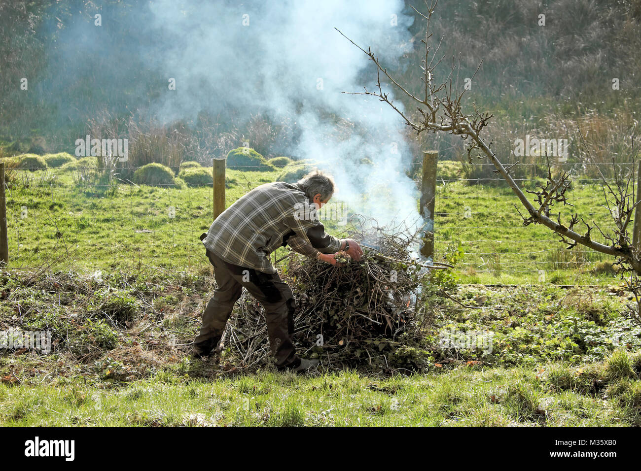 A man lighting making a bonfire in the garden tidying up and burning old sticks and branches in preparation for - Stock Image