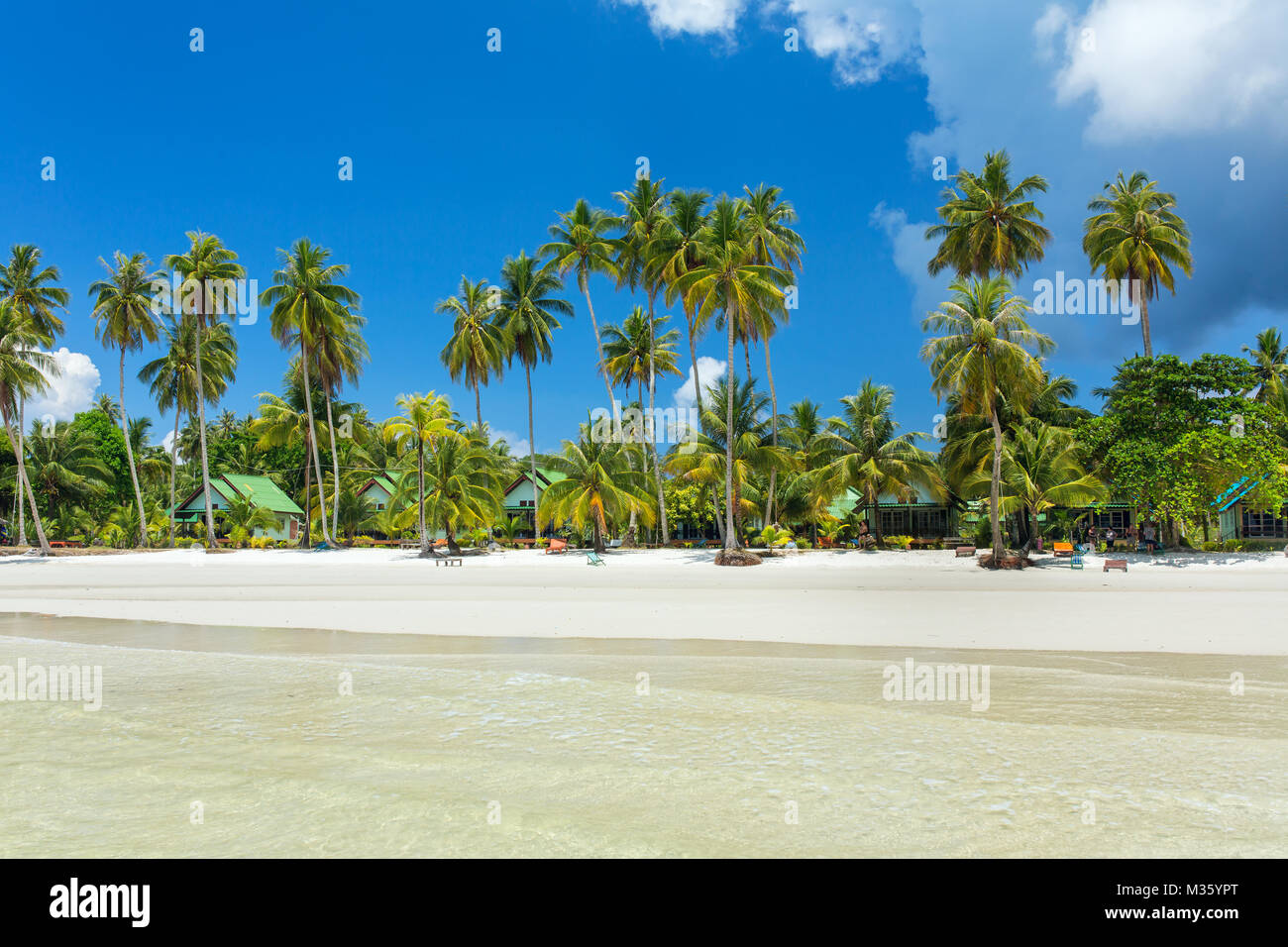 Palm trees on the perfect tropical white sand beach on Koh Kood island in Thailand - Stock Image