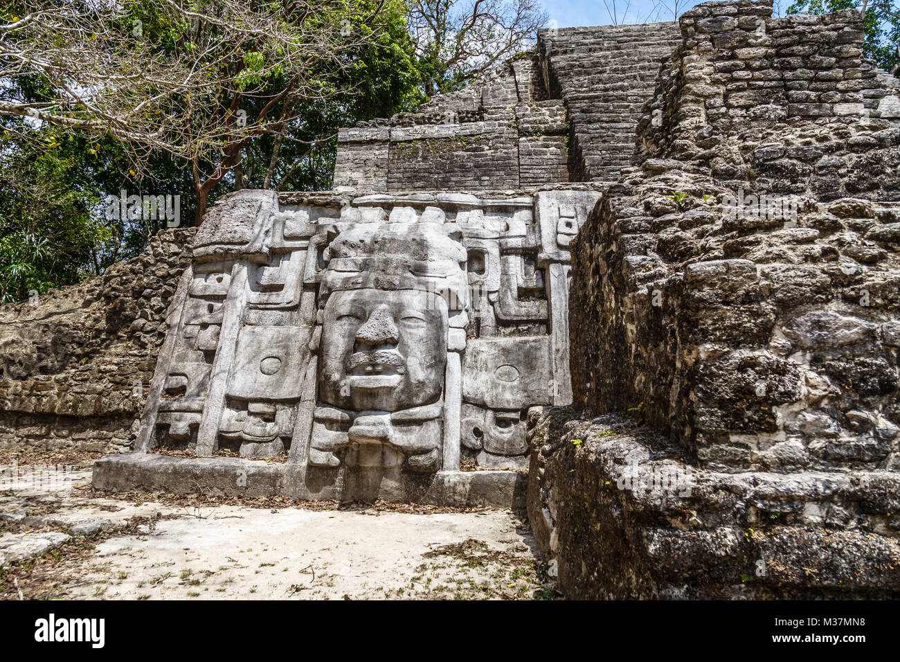 Old ancient stone Mayan pre-columbian civilization pyramid with carved face and ornament hidden in the forest, Lamanai - Stock Image