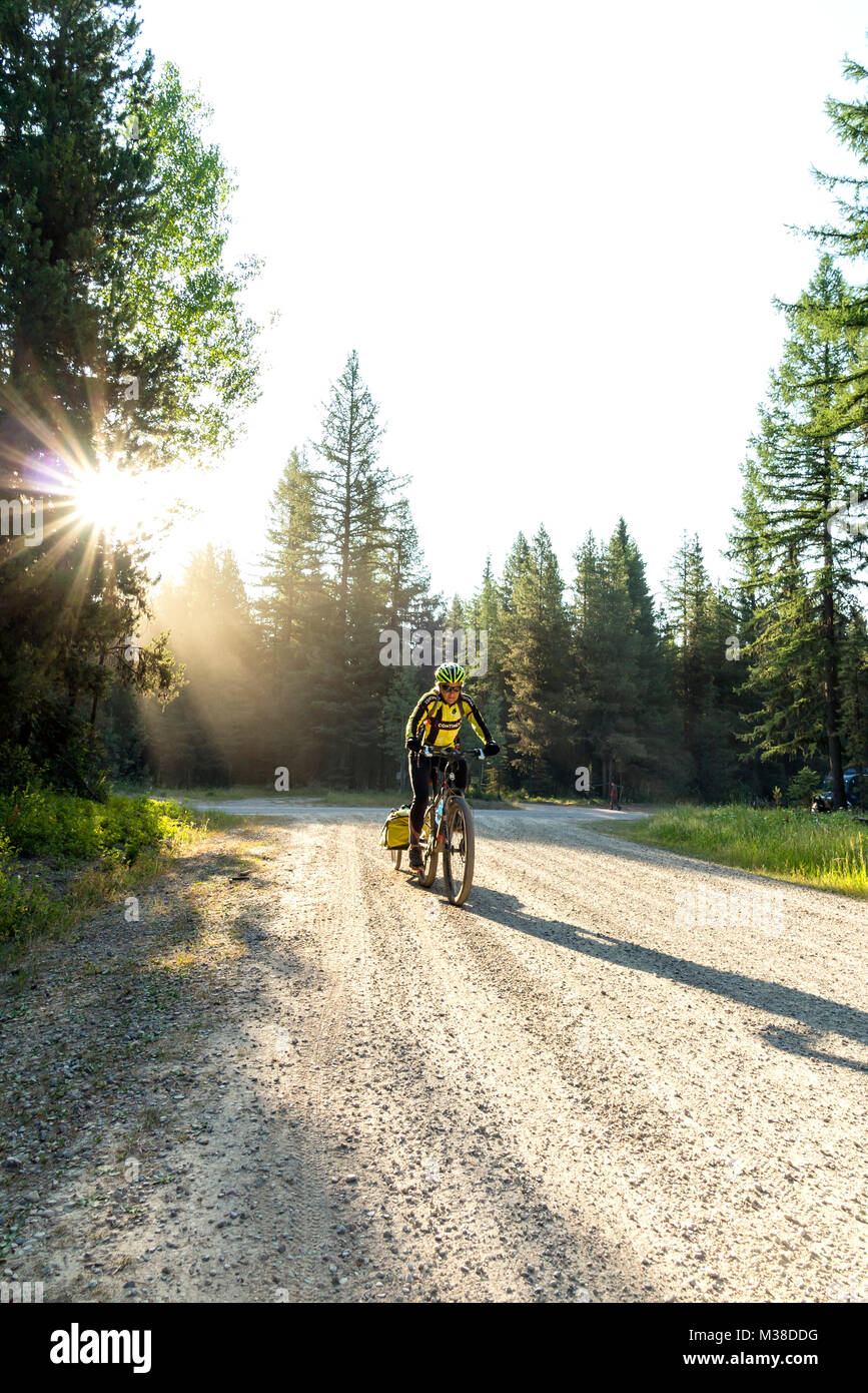 BC00652-00...MONTANA - Vicky Spring begins the climb on Forest Road 115 to Red Meadows Pass along the Great Divide - Stock Image