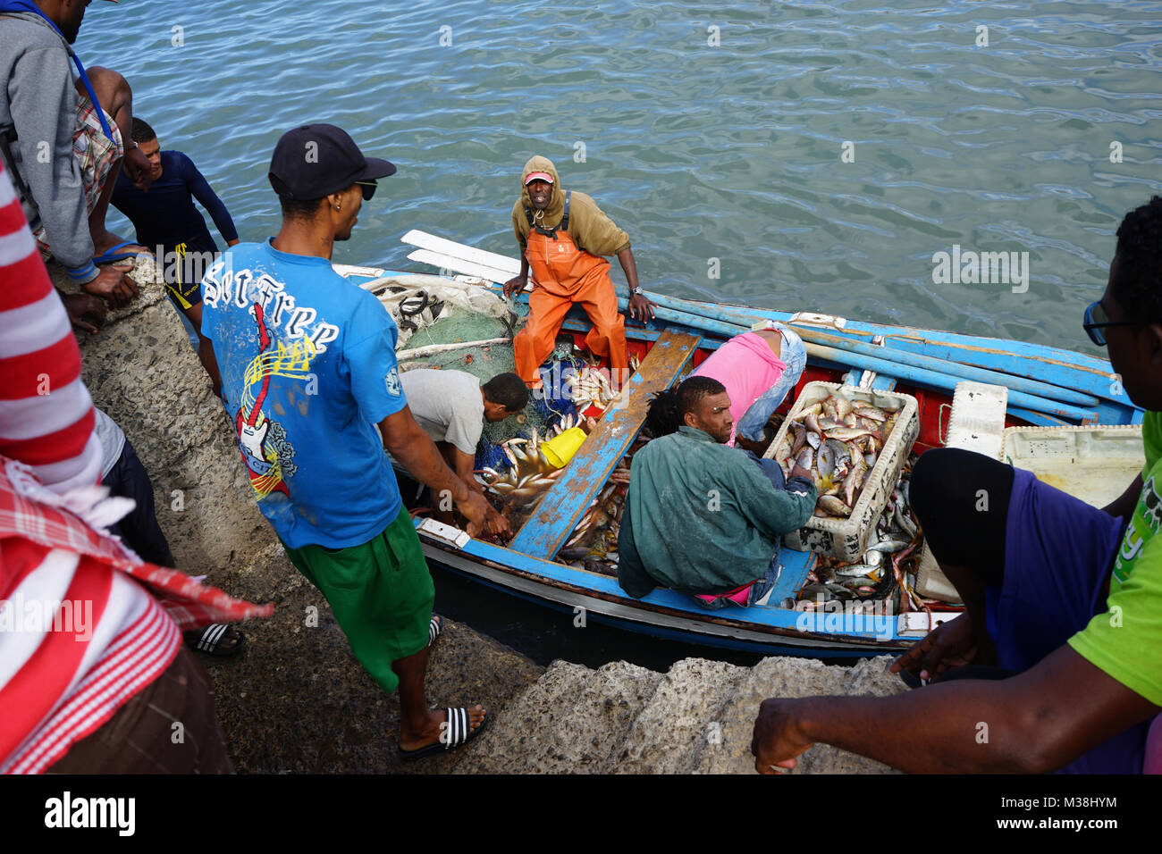Fishermen bringing Fish to the Fish Market in Mindelo Stock Photo