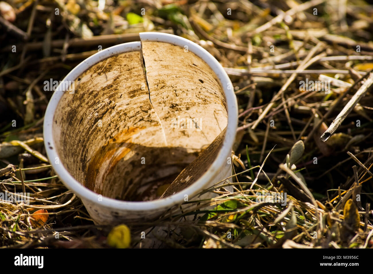 Plastic cup washed up at high tide then left behind, part of a project that I'm doing looking at pollution and - Stock Image