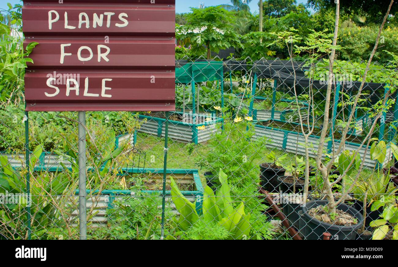 Plant For Sale Sign Posted On A Fence At A Public Community Garden Stock Photo Alamy