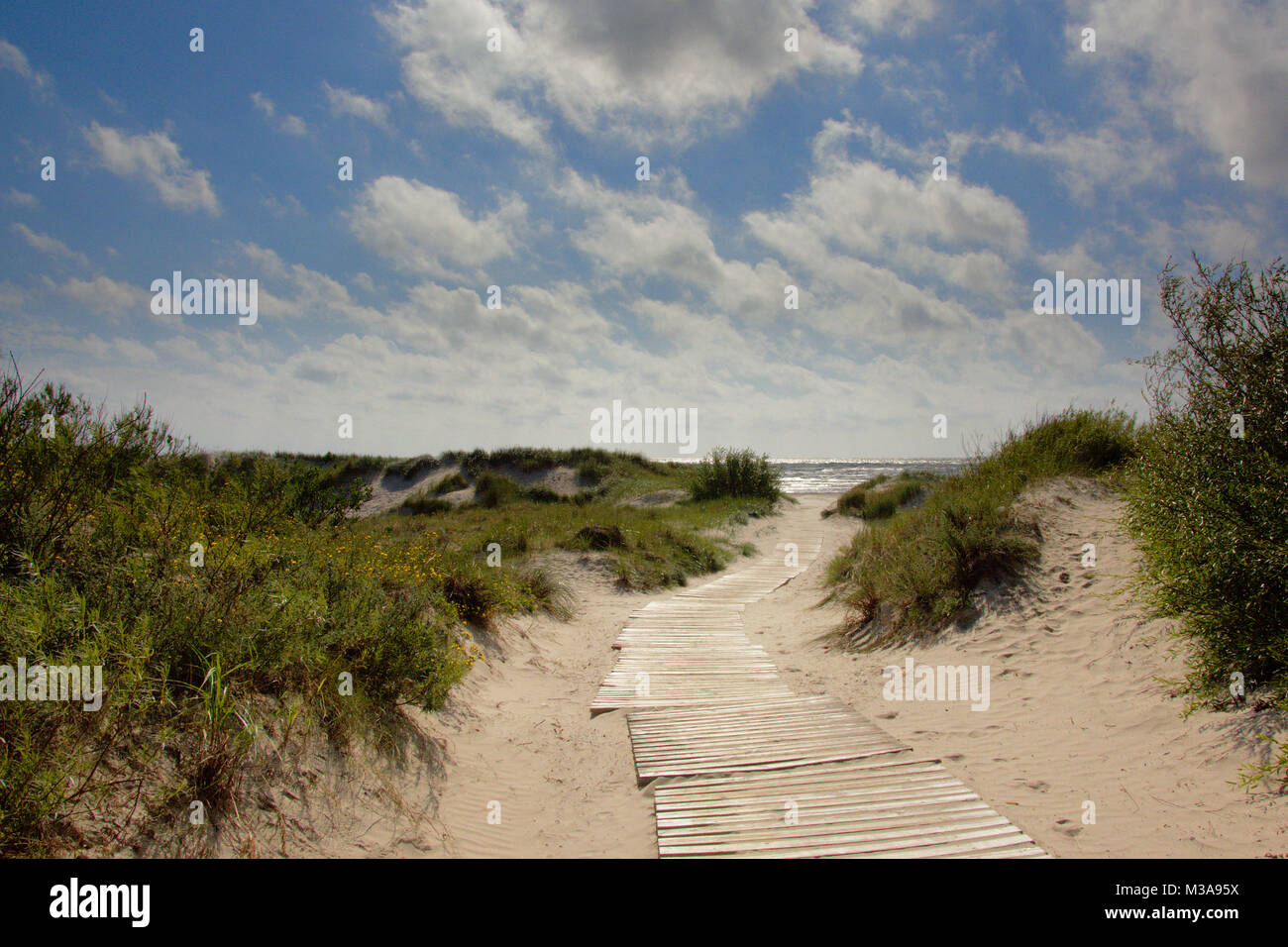 Wooden walking path through the dunes of Liepaja along the Baltic sea - Stock Image