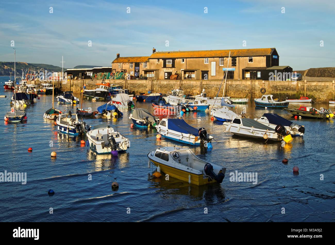 UK,Dorset,Lyme Regis,The Harbour & Aquarium - Stock Image