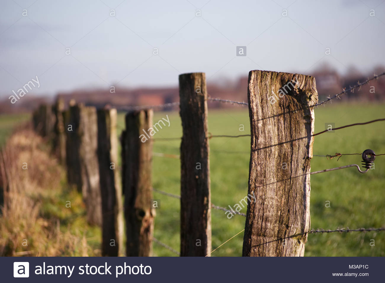 wooden farm fence. Barbed Wire Farm Fence With Wooden Poles I