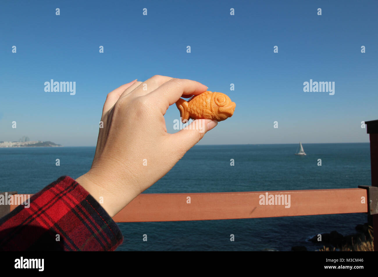 Hand holding a mini fish-shaped waffle with custard filling with the sea background in sunny day, South Korea - Stock Image