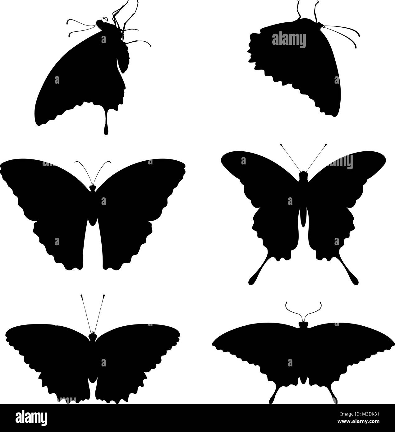 silhouettes of butterflies on a white background - Stock Vector