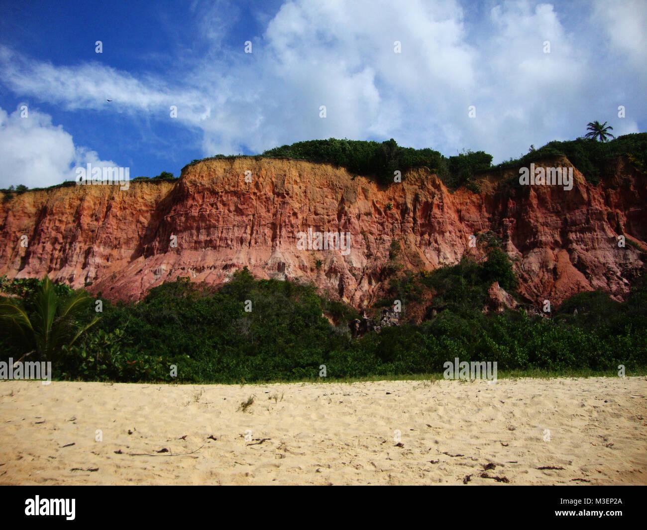 Travel Agency Tropical Paradise Vacation Stock Photos & Travel