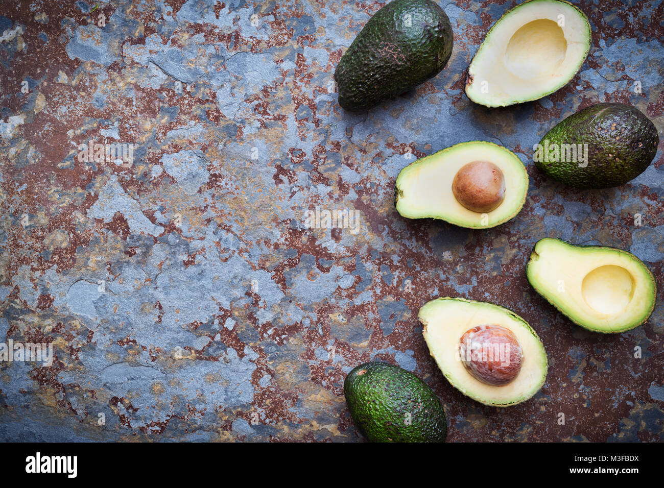 Persea americana. Avocado pattern on a slate background - Stock Image